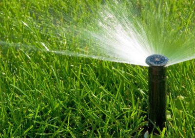 Cameron_Gardens_Irrigation_Services1