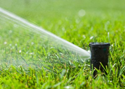 water-sprinkler-head-spraying-new-grass-lawn