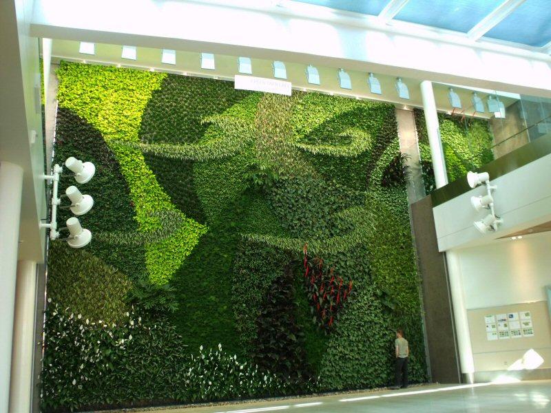 proflow-parede-verde02